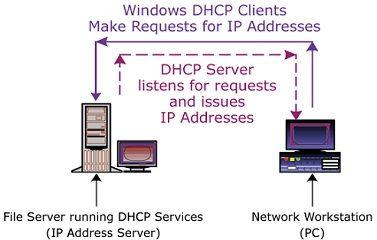 Enable dhcp in Windows 8